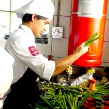 Hospitality Management (Master's Degree in English)