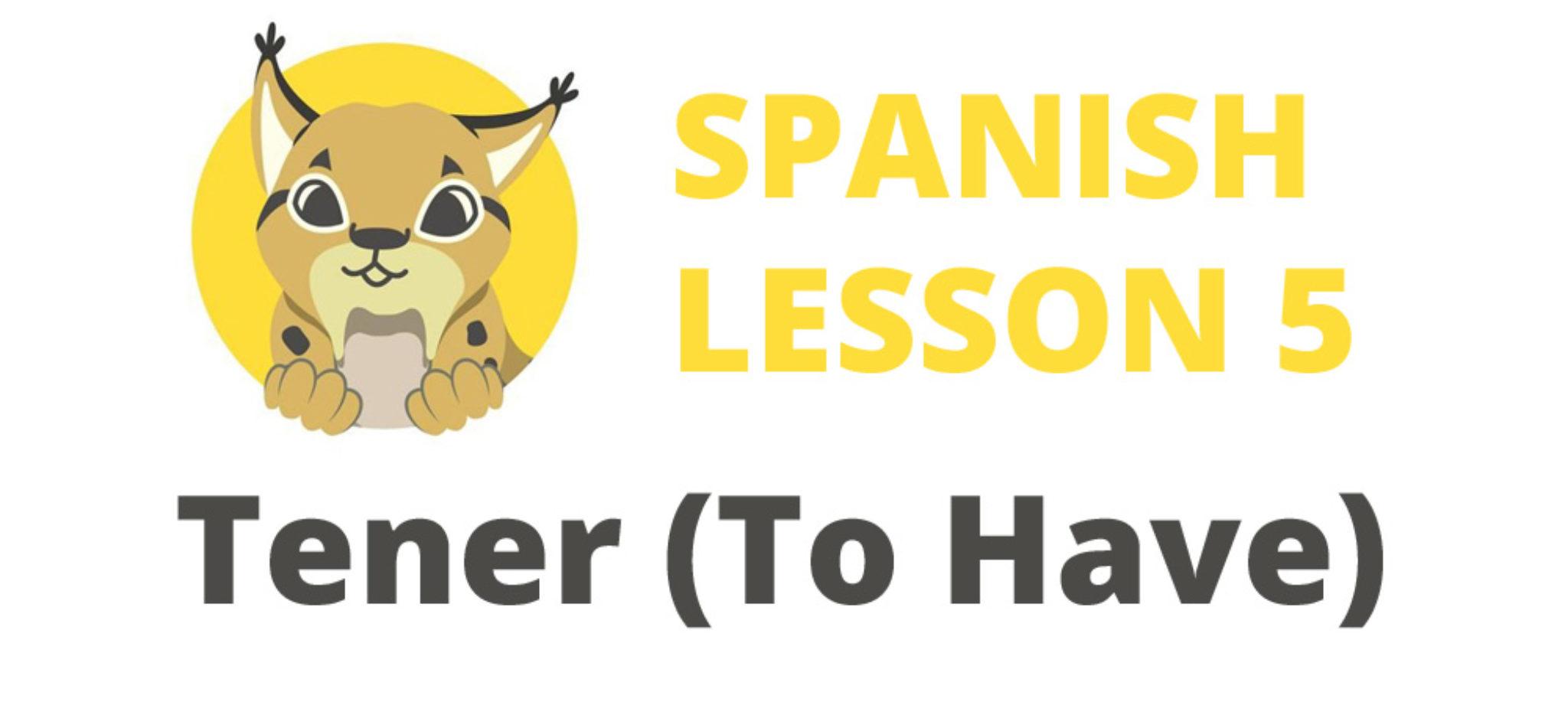 Spanish verb Tener To Have