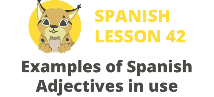 Examples of Spanish Adjectives in use