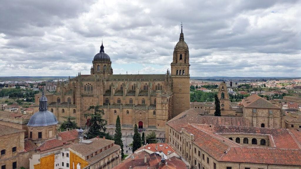 Bachelor in Spain